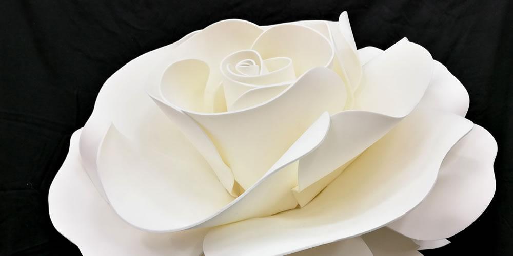コトハナ 祝い花イメージ