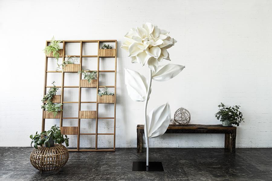 自立花フラン 白/Lサイズ