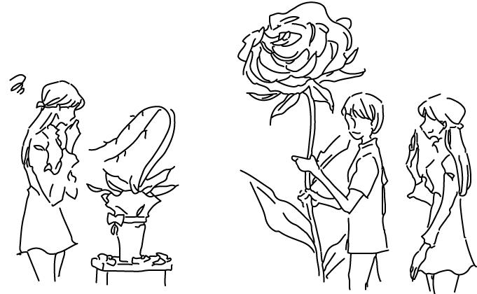 お花の処分に困る胡蝶蘭 コトハナの祝い花は大丈夫