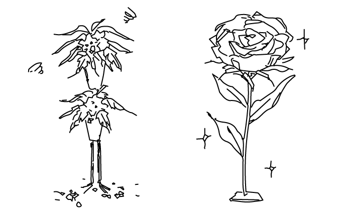コトハナの祝い花は、枯れません。